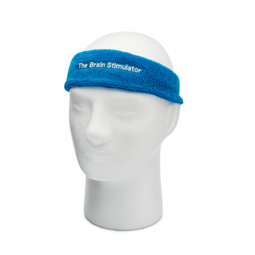 Timmy with Blue Embroidered Headband